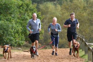 Canicross – Conheça o esporte canino e como participar
