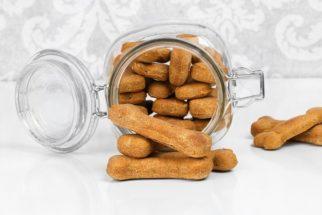 Petiscos para cachorros – Receitas e dicas