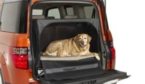 2010 Dog Friendly Honda Element