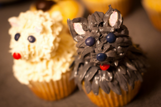 Pupcake – O cupcake do cachorro