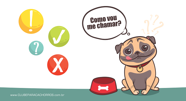 Batize seu cachorro com nome curto, será mais fácil dele memorizar