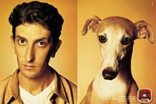 Cachorros ficam muito parecidos com seus donos