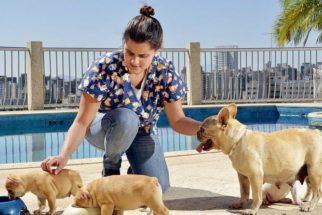 Babá de cachorro – Conheça esse serviço!