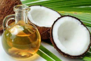 Óleo de coco traz muitos benefícios para cachorros