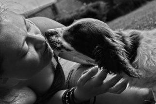 Animais de estimação auxiliam donos em momentos de dificuldade