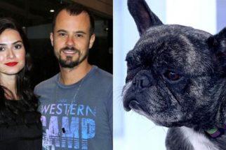 Após separação, atores globais compartilham guarda de cão