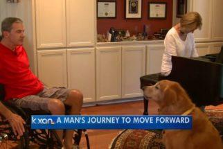 Cachorro salva dono após acidente de trânsito