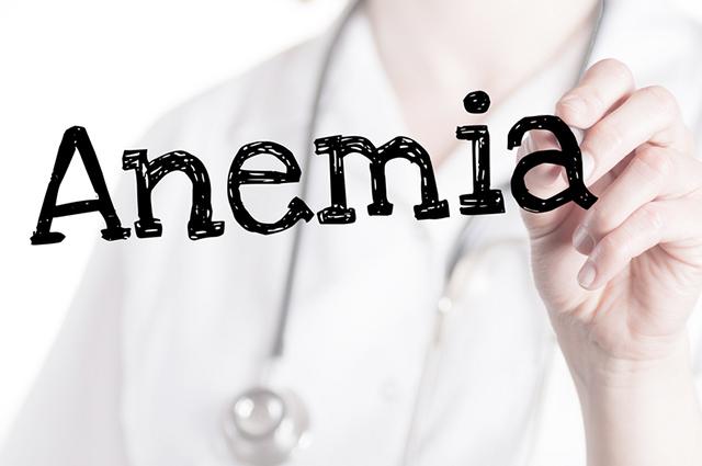 O cão com anemia pode ter outros indícios, como palidez da pelee das membranas mucosas