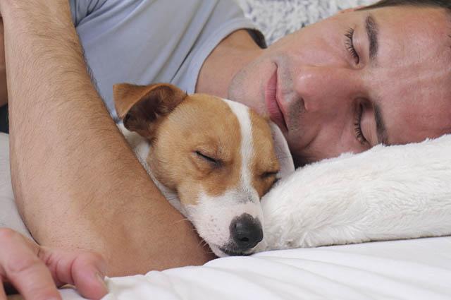 Quando o cachorro dorme próximo a você é uma demonstração clara de amor