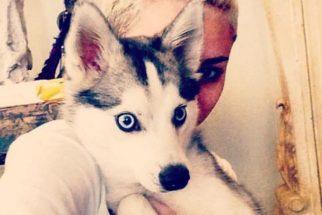 Conheça os animais da Miley Cyrus que inspiraram tema do novo álbum da cantora