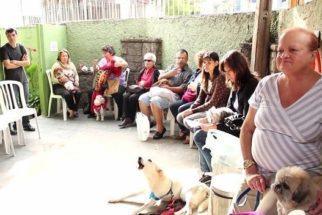 Em SP, centro espírita atende mensalmente mais de 2 mil animais