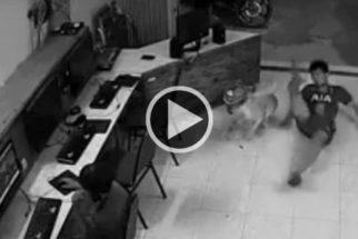 Homem tenta agredir cão indefeso e leva tombo impressionante!