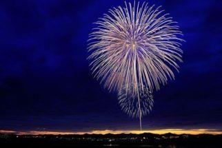 Município proíbe fogos de artifício que emitem sons em respeito aos animais