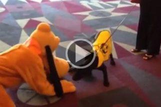 Cão-guia fica radiante de felicidade ao conhecer Pluto, o cachorro do Mickey