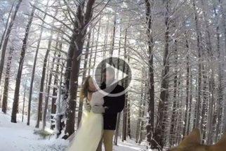 Em plena neve, cadela filma casamento dos seus tutores