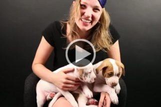 Reação de pessoas com medo de cães ao verem filhotes de pitbull