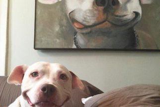 Cão faz pose semelhante a de pintura de quadro e 'viraliza' na web
