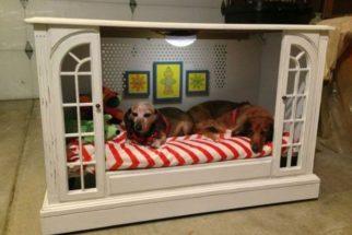 10 camas criativas para cães