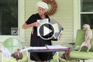 Para rir: cãozinho dança enquanto 'vovó' toca acordeon