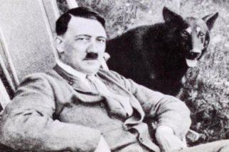 De volta ao passado: onde foram parar os animais dos judeus?