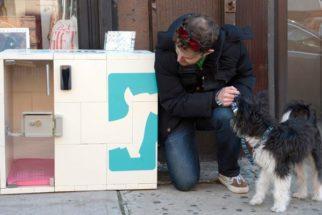 Conheça a loja que disponibiliza 'estacionamento' para cães