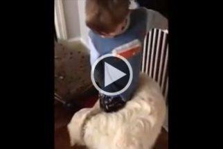 Para rir: cãozinho abraça garoto de maneira inusitada