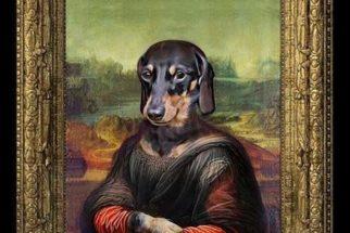 Artista transforma animais em 'nobres' através de montagens