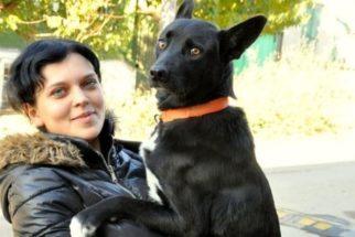 Cadela caminha 320 quilômetros para reencontrar mulher que a salvou