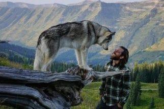 Loki: um cãozinho que adora se aventurar com seu dono