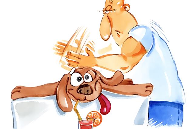 Para fazer massagem nos animais é preciso saber dosar a intensidade com o ritmo