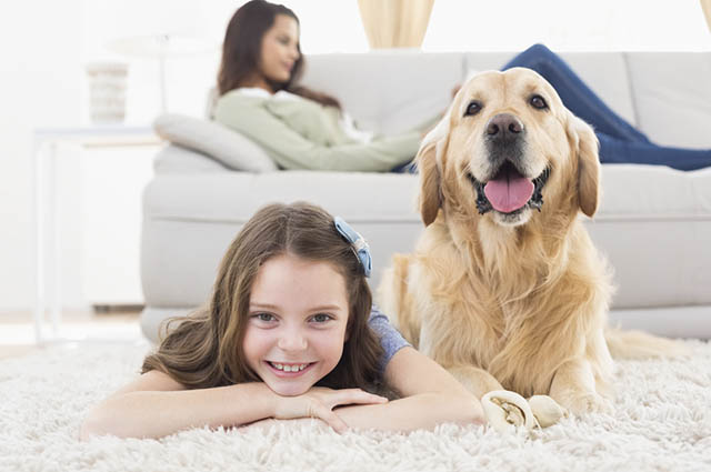 Os tapetes são fáceis de remover e lavar, sendo mais indicado para uma casa com cachorros