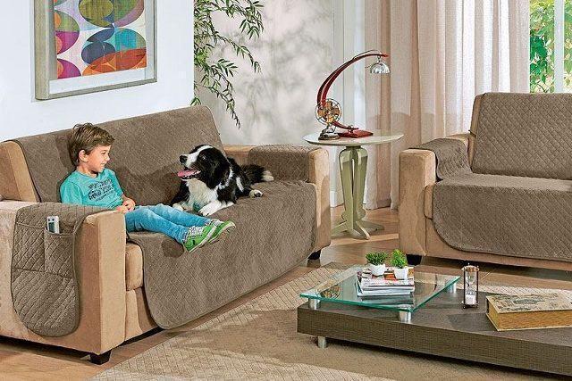 dicas-para-decoracao-de-apartamento-para-donos-de-cachorros-3
