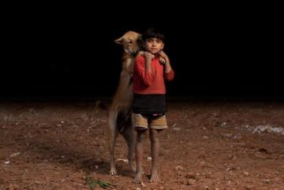 Fotógrafo faz ensaio comovente de crianças órfãs que dividem comida com cães