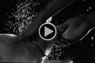 Vídeo tenta mostrar ponto de vista de cães que detestam banho