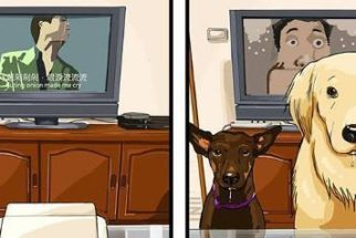 Ilustrações retratam como seria a vida antes e depois de adotar um cão