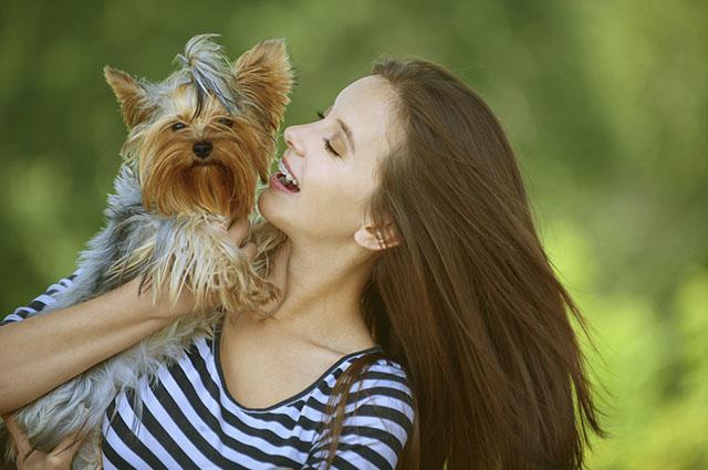 Os cachorros conseguem perceber e diferenciar sorriso e expressão de alegria e raiva