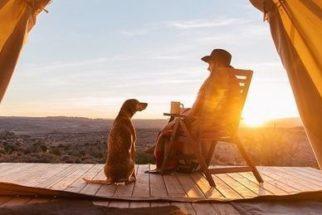 Fotógrafo inova e passa a viver aventuras ao lado de sua cadela
