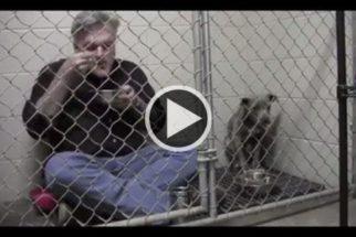Para ganhar confiança, veterinário se alimenta ao lado de cadela