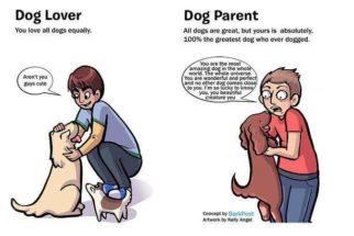 Confira a diferença entre quem gosta e quem é tutor de cães