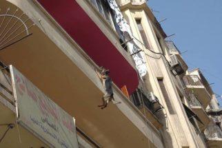 Cadela é resgatada após ficar pendurada por corrente em varanda