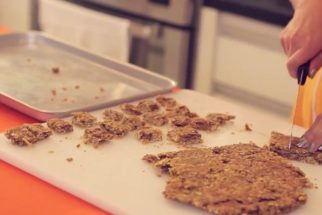 Receita deliciosa de barra de cereal para cachorros