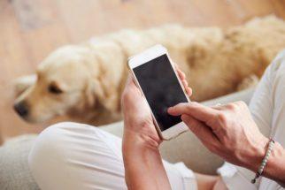 Aplicativo para celular promete facilitar a vida dos tutores de cães