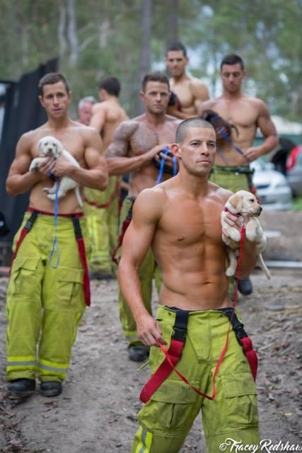 bombeiros-posam-ao-lado-de-filhotes-para-calendario