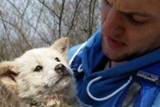 Americano salva filhote de fazenda de abate de cães na Coreia do Sul