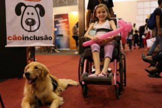 Projeto disponibiliza cães treinados para ajudar cadeirantes