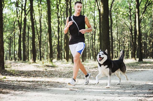 Crie o hábito de fazer exercícios na companhia do seu cão e organize um cronograma de atividades