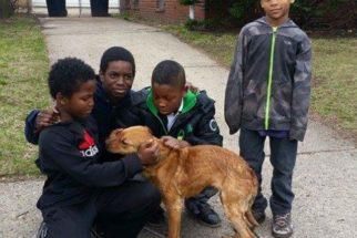 Cadela é resgatada após ser achada amarrada em casa desocupada