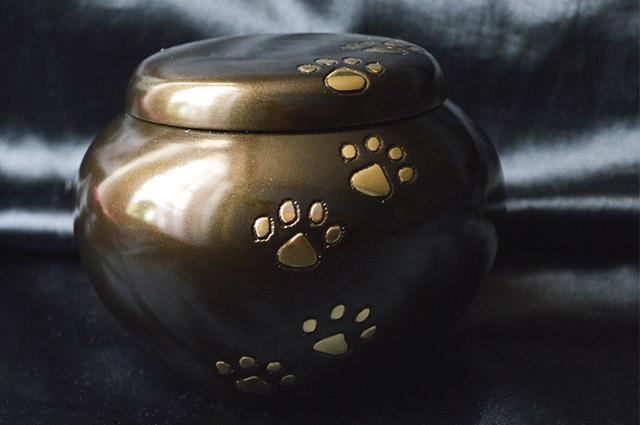 """A cremação é a forma mais indicada porém mais onerosa para os """"bolsos"""""""