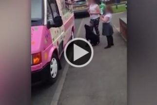 Vídeo mostra cão que espera pacientemente em fila para ganhar sorvete