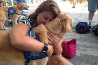EUA: Cães são enviados para consolar famílias das vítimas de atentado